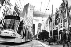 (DF digiphoto) Tags: street houses sky bw white streetart black art buildings blackwhite tram australia melbourne tramway lenght