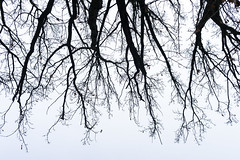 NX1 Poland Daniel Kulinski (Samsung SMART CAMERA) Tags: photography europe image walk daniel creative picture samsung poland 1977 16mm photograhy nx pruszkw pruszkow nx1 kulinski samsungnx samsungimaging samsung16mmf24 danielkulinski nx16mm pruszkw samsungnx1