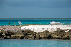 Soledad en el Caribe (DJG.Photo) Tags: republica island punta dominicana caribbean cana isla caribe saona