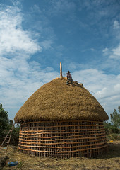Man covers the thatched roof of a traditional ethiopian house, Kembata, Alaba kuito, Ethiopia (Eric Lafforgue) Tags: africa wood roof sky people house color home vertical architecture outdoors photography wooden construction village adult african traditional culture straw progress hut thatch typical ethiopia thatched hornofafrica developing ethiopian riftvalley eastafrica thiopien etiopia abyssinia ethiopie etiopa ruralscene unrecognizable buildingexterior fulllenght onemanonly  etiopija 1people ethiopi alaba  toukoul etiopien etipia halaba  etiyopya  unrecognizableperson    kembata      alabakuito ethio163353