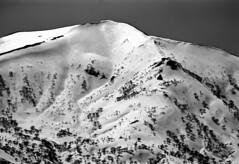 Mt.Hamamasu from Mt.Nakanosawa (threepinner) Tags: snow ski japan spring hokkaido skiing pentax kodak   hq 135mm microfilm hokkaidou mzm f35 selfdeveloped northernjapan mashike smcpentax imagelink  mountainsnaps    analogmountainsnaps mtnakanosawa