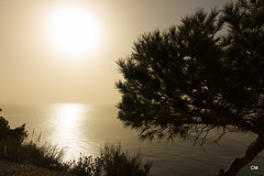 de ms enll de la mar (.carleS) Tags: sea sun sol canon eos mar mediterranean alba pins amanecer pinos nou cala mediterrneo poble mediterrani moraig 60d benitatxell caeduiker