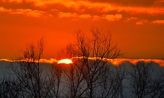 accolto...dalle nuvole (rosy.c) Tags: sunset sky orange love silhouette heart sunintheclouds
