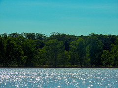 DSCN0905 (vhenryz) Tags: park trip trees sky cloud nature water clouds forest river reserve national mangrove jungle brunei ulu temburong