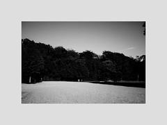 Last year ... an empty parking lot... (l1ze) Tags: 28mm blackwhite blackandwhite dk danmark denmark jutland jylland leica leicam leicam9p monocrome summer syd blackandwhitephoto blackandwhitephotos bw l1ze lennartjoern