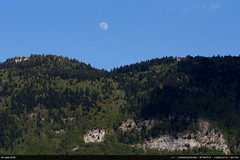 17:52 : Wildlife (Ludtz) Tags: blue moon mountain green montagne canon spring vert bleu moonrise 74 printemps salve 52weeks canoneos60d 52semaines ludtz ef85 18 52weeksthe2016edition