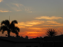 Sunset over Penrith (tessab101) Tags: sunset sky orange palms air sydney australia pollution nsw western