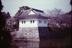 Corner bastion at Odawara castle (Charles' daughter) Tags: castle japan odawara bastion