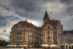 Palatul Vulturul Negru, P-ta Unirii, Oradea (tonemapped hdr) (goon_1234) Tags: secession oradea tonemapped
