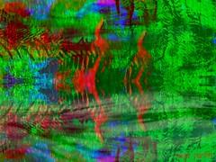 where spirits roam (Sonja Parfitt) Tags: mirror ferns rocksculpture