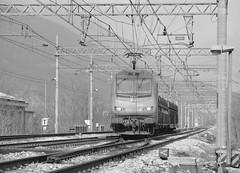 Bivio/P.C. Valle set 2 #3 (train_spotting) Tags: alstom sncf astride captrain e436338mf nikond7100 bb436338 biviopcvalle cuzzego