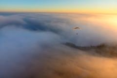 bassano-13582.jpg (Indradhano) Tags: bassanodelgrappa sun sunrise paragliding flying mist fog clowds nature fly