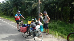 Private Trip 8 Days Ride (Bike Tours Thailand) Tags: world life sunset sea food sun mountain tree green chicken ice beach cup bike bicycle set trek thailand island temple james waterfall amazing holidays kayak tour view rice action tiger cream cock rubber bull hidden eat thai bond cape cave local spicy ao aussie fighting phuket koh touring nang nga khao thaifood andaman specialized chalong poda phang promthep taimuang fightitng