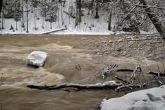 Pitkäkoski, River Vantaanjoki (Vantaa, 20120325) (RainoL) Tags: winter snow finland river geotagged march vantaanjoki u vanda fin rapid vantaa 2012 uusimaa pitkäkoski 201203 20120325 geo:lat=6026923200 geo:lon=2490000700