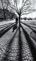 Stockholm, April 7, 2015 (Ulf Bodin) Tags: morning sun man walking sweden stockholm wide sverige nybroplan stockholmslän vertorama