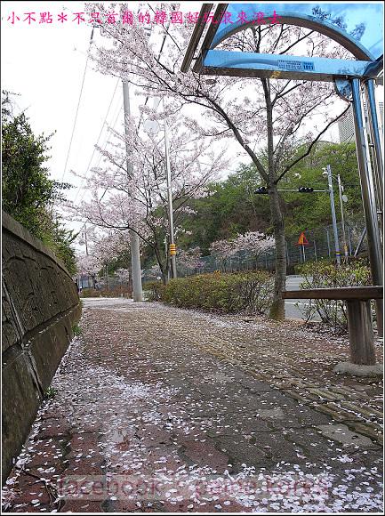 統營彌勒山閑麗水道纜車 (79).JPG