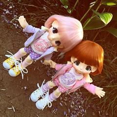 Twins in my garden 💕😘 #Kikipop #doll #twins #garden (cute-little-dolls) Tags: square squareformat iphoneography instagramapp uploaded:by=instagram