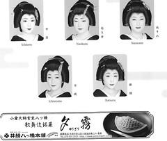 Kitano Odori 2014 016 (cdowney086) Tags: geiko  kamishichiken   naokazu ichiteru naosome katsuru     ichimomo