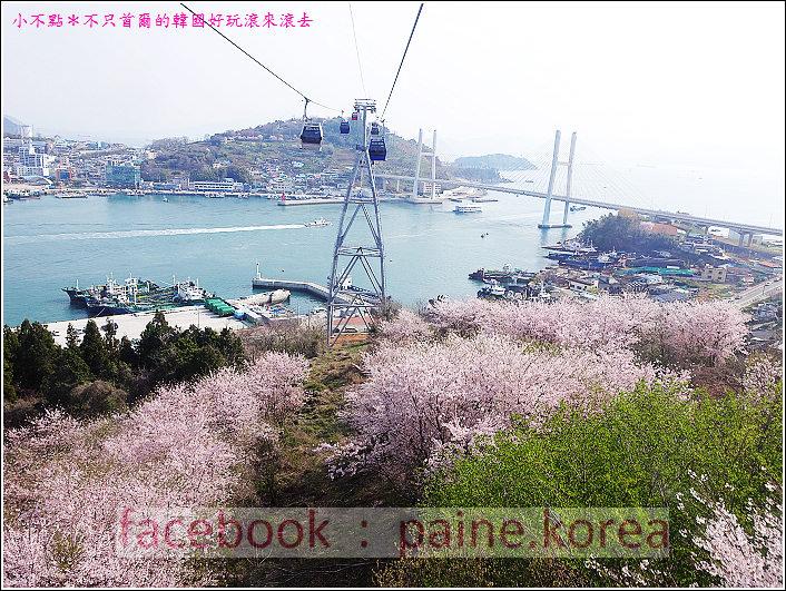 麗水海上纜車與紫山公園 (15).JPG
