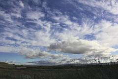 The Marsh (SolanoSnapper) Tags: northerncalifornia solanocounty suisunmarsh hillslough grizzlyislandroad