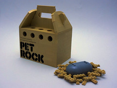 Pet Rock (cmaddison) Tags: pet rock toy lego box container fad