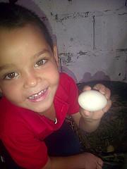 IMG-20160505-05714 (dernst) Tags: jardin huevos cosecha gallinas preescolar