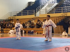stefanou_15_5_2016_knockdown_122