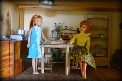 Vintage Skipper and Stacy (pe.kalina) Tags: vintage doll dolls stacey barbie skipper mattel diorama dollhouse roombox