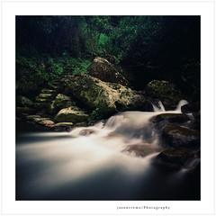 (jasoncremephotography) Tags: longexposure 120 film water rollei analog rolleiflex velvia fujifilm fujichrome fw filmphotography rvp50 filmphoto rolleiflexfw