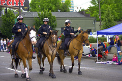 Mounted Police (swong95765) Tags: show street roses horses police parade riding mounted crowds