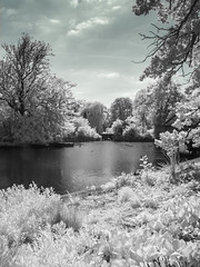 Dulwich Park (blackwoodse6) Tags: park uk blue trees england white london water canon ir pond bluesky infrared foilage dulwich falsecolour dulwichpark londonparks canong10 londonboroughsouthwark