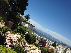 During my trip in the US and Canada :)   #travel #USA #Canada #Alcatraz #California #Sanfrancisco #aquarium #summer #flower #forest (donnahuang1) Tags: travel usa canada alcatraz california sanfrancisco aquarium summer flower forest