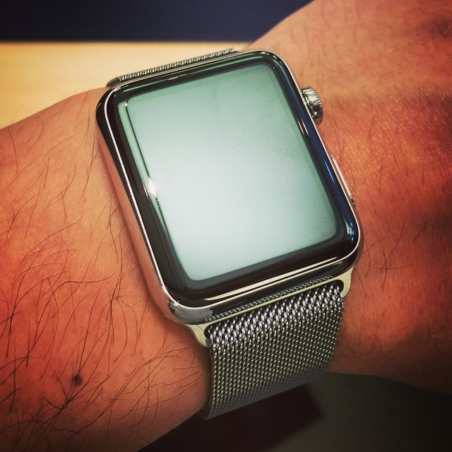 Yup, thats a 42mm Stainless Steel APPLE WATCH with the Milanese Loop band on my wrist! Feels great!