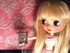 """Toy-in-the-Frame Thursday; and Blythe-a-Day May#31: Poetry: Luna & """"Sympathy"""""""