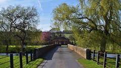 The gatehouse, Godmersham Park (Aliy) Tags: godmersham kent village rural gatehouse willow tree bridge river road fence rail railings