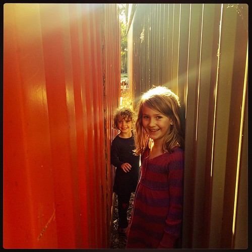 094/365 • DB took us on a 'follow me everywhere' walk yesterday - including squeezing through between the shipping containers and the shed! It's lovely to hand over the power to the littlest one in the family - she revels! • #094_2015 #latergram #afternoo
