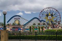 DSC05169 (Javier Castanon) Tags: california public amusement disneyland disney adventure amusementpark wheeloffortune coaster themepark californiaadventure paradisepier disneylandia disneypark ruedadelafortuna