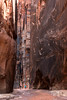 jc_Buckskin_150419_0356.jpg (James Capo - Photography) Tags: usa southwest trekking utah couple hiking canyon adventure slot seniors oldercouple buckskingulch biglandscapesmallperson