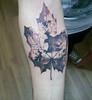 frunza_tatuaj (TH Tattoo - Salon tatuaje Bucuresti) Tags: tattoo tatuaj leaftattoo