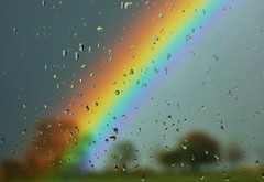 Rain and Rainbows..x (Lisa@Lethen) Tags: trees window nature rain weather outdoors scotland drops rainbow colours