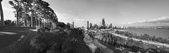 Perth from Kings Park BW