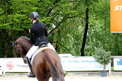 IMG_0743 (dreiwn) Tags: horse pony pferde pferd equestrian horseback reiten horseriding dressage hnger 2015 reitturnier dressur pferdekopf dressuur junioren ridingarena pferdesport doublebridle reitplatz reitverein pferdehnger kandare turnierreiten dressurprfung ldressur
