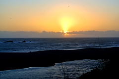 Pacific Sunset (ivlys) Tags: california sunset sea usa bird nature landscape meer sonnenuntergang pacificocean landschaft vogel gualala highway1north ivlys