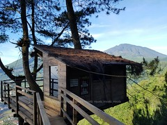 Great Tree House (niyudz) Tags: wood house tree green nature architecture indonesia design treehouse local malang eastjava jawatimur batumalang omahkayu