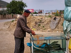 100_2961 (szymek_ka) Tags: pogradec езеро охридско ohrit liqueni поградец