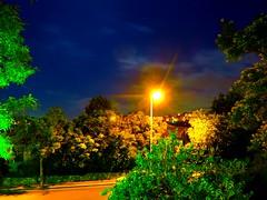 Israeli Night (zingeramit263) Tags: night canon dark israel outdoor karmiel sx710hs