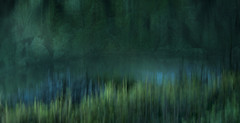 sleepwalking in the forest (landsendula (patchy presence)) Tags: blur water bluebells composite river woods shadows darklight reverie greenblue nikond300 fantasticalforest