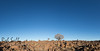 Giant's Playground (robsall) Tags: africa vacation playground canon canon5d namibia canoneos karas 1635 quivertree 2015 giantsplayground quivertrees canonllens canon1635mm canon1635 1635f28 1636mm canon1635mmf28liiusm canon5dmarkiii 5dmarkiii 5dm3 5dmark3 5dmiii canon5dm3 canoneos5dm3 robsallphotography quivertreeplayground