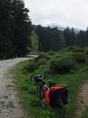 Route Colbert entre Roquefort-de-Sault et Réal