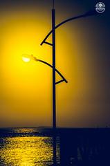 Natural Light. (williknot) Tags: nikon canon sony dslr fullframe ff d7000 d7100 d7200 d750 d610 5dmark samsung camera sun light sunset sunrise yellow sea reflex mirror brasil brazil nordeste amrica composition moment capture maranho beach praia